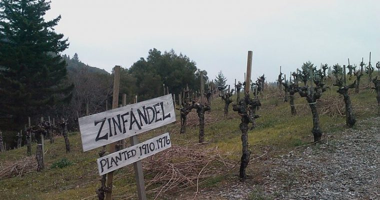 Zinfandel: More Than You Think